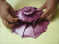 Chris K Palmer's 12 Point Flower Tower in Action (georigami) Tags: paper origami papel papiroflexia origamiforum