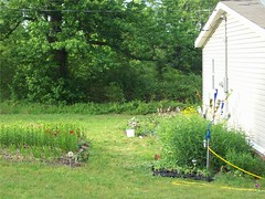 Spring 2010 before