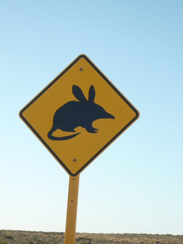 Bilby sign near Monkey Mia, WA