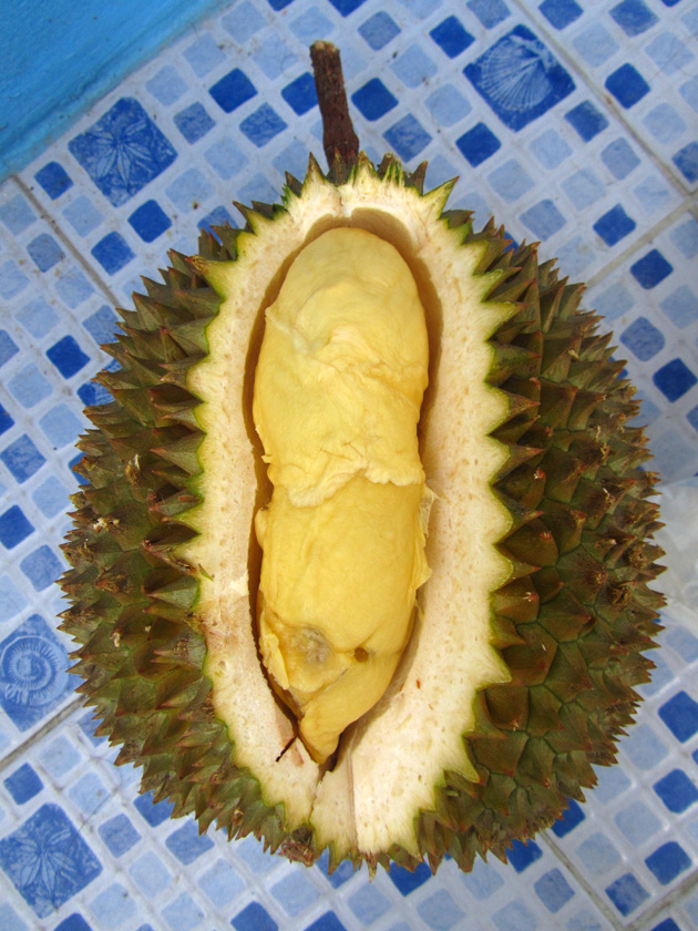 First Durian of the Season!