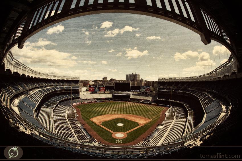 Tomas_Flint-NY_Yankees3