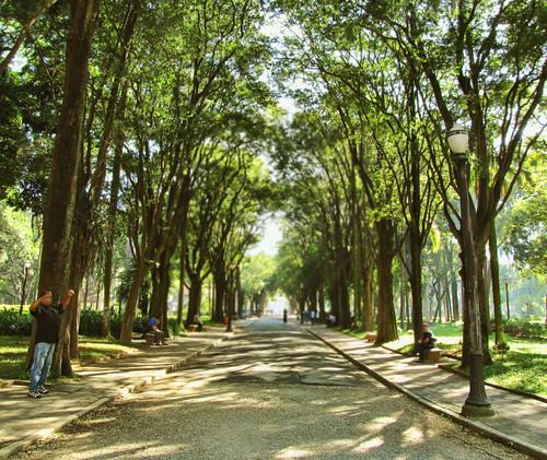 Jardim da Luz by kassá