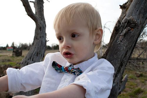 bow tie5 (1 of 1)