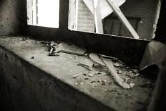 Cracked (Eshaus) Tags: barn farmers farm glas boerderij terrein scherven verlaten
