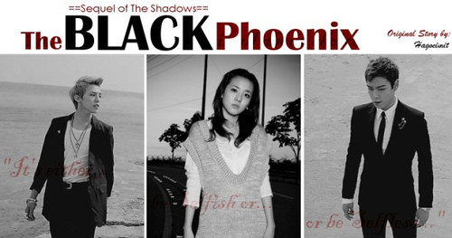 (10-11) The Black Phoenix by MinAnYong