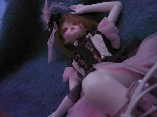 Tatiana, petite Lady bee 5666329470_4957039e78_z