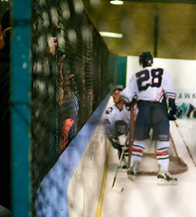 Fingers through the net (timhughes) Tags: ice hockey pentax icehockey knights canberra act aihl k7 2011