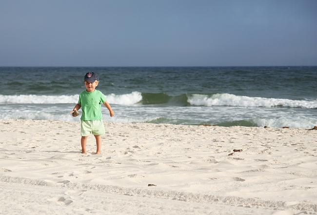 rover_beach