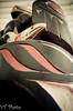 totem (nah-tography) Tags: macro art 35mm eagle pentax native totem pole ltd k5 slamon