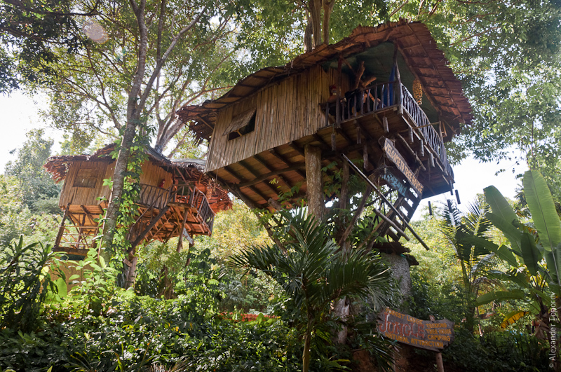 Treehouse of Koh Lanta
