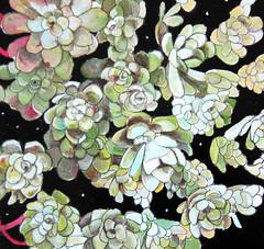 succulents (michele_maule) Tags: black flower art night painting originalpainting succulents oilpainting folliage portlandart artinportland