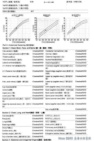 高層次超音波0616-報告2