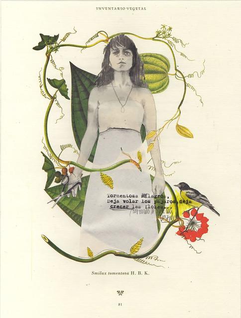 Marcela Quiroz E., Cali