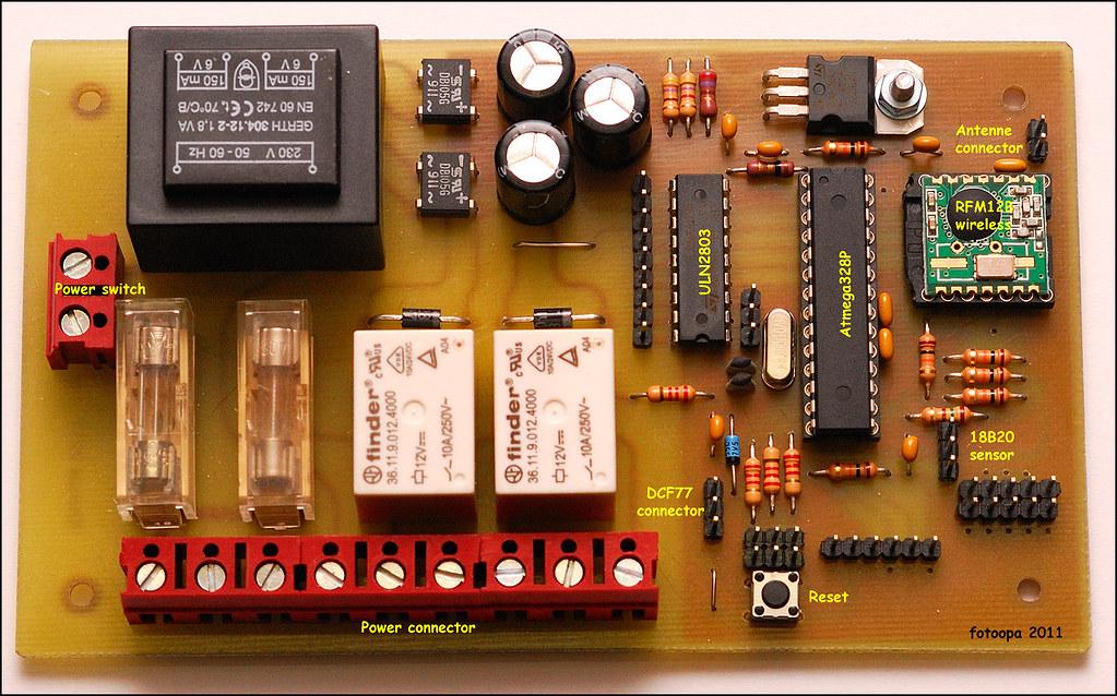 DSC 9870