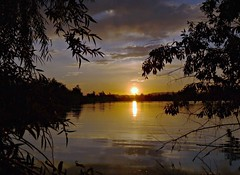 Rio Grande Sunset (Ph0tomas) Tags: trees sunset sky lake newmexico water clouds sunrise reflections river lumix pond wideangle g1 f4 714 vario landofenchantment ph0tomas