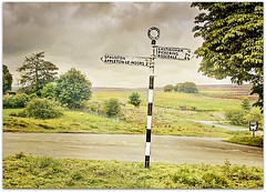 An Old Signpost (~ paddypix ~) Tags: road trees england countryside yorkshire lane moors signpost northyorkmoors moorland fingerpost