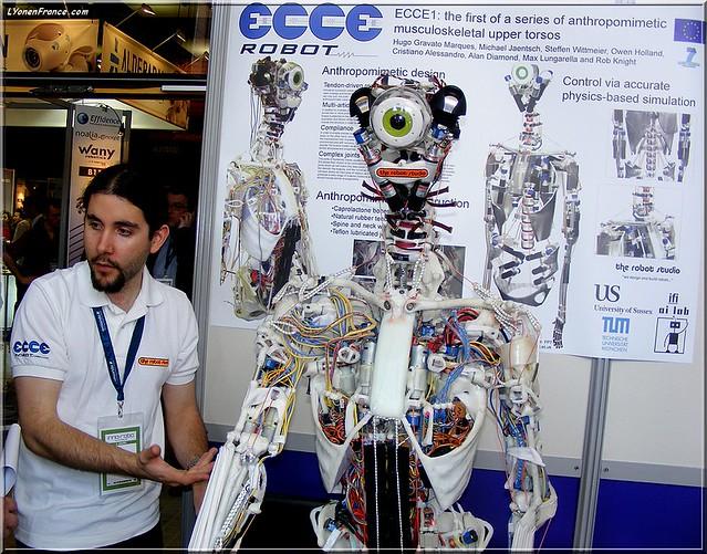 robots anthropomimétiques