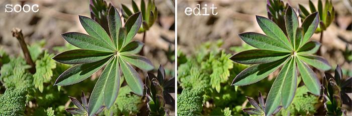 green2-comparison
