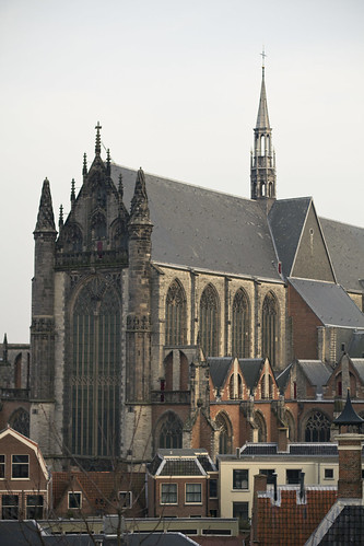 cathedral in leiden
