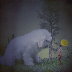 the meeting of difference (Carlos Castaeda') Tags: dog giant friendship little native dwarf happiness human sweat knowledge huge texturebylesbrumes