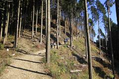 景信山の登り
