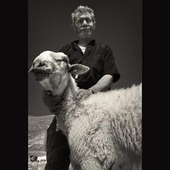 (Antonio Liokouras) Tags: mountains digital sheep shepherd traditional greece nikond80
