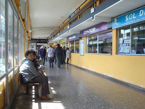 20100407005