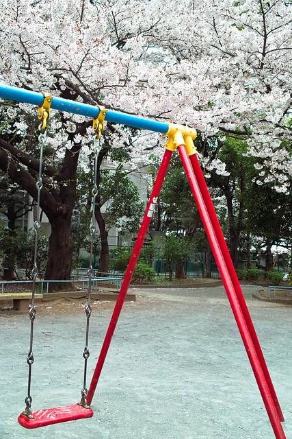 Sakura swing