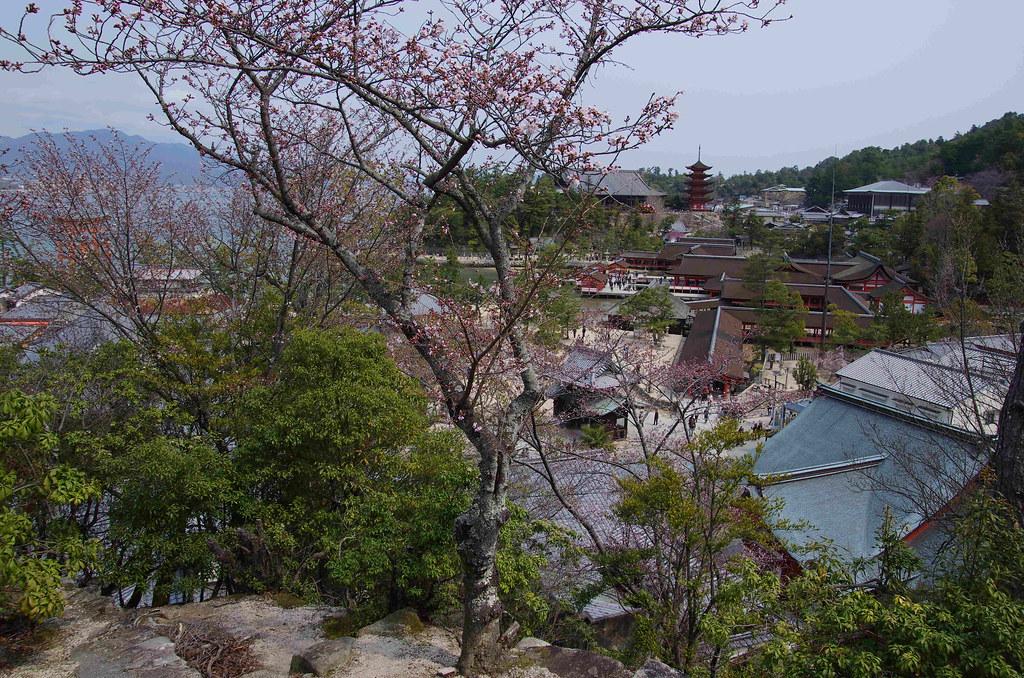 廣島,四國,大阪,京都六日遊(1)