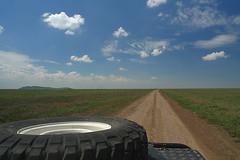 Serengeti View