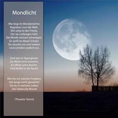 Mondlicht - Experiment Bildbearbeitung