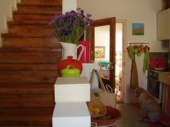 Cozinha (SMAC colours) Tags: kitchen garden casa country campo decoração cor cozinha móveis objectos showyourhouse inspirações