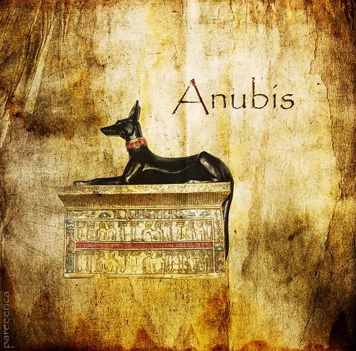 * Anubis *