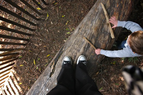 standing on a log that cooper drums on