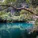 Vietnam - Phong Nha Ke-Bang National Park