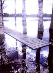 spring flood (maria_neiti) Tags: trees lake spring dock fuji flood mini instax