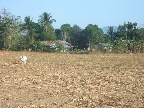 Mindoro-Sablayan-Sabang (28)