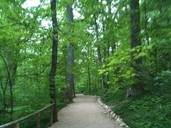Walking Trail to Monticello