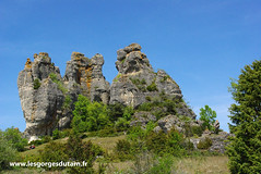 Roquesaltes (lesgorgesdutarn.fr) Tags: caussenoir sentierbotaniquemontmjean florecaussenoir