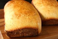 Bread Bible's Buttermilk Honey Bread (www.suziethefoodie.com) Tags: bread baking dough honey bible scratch buttermilk
