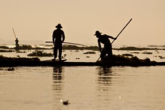 Men at work on Inle lake - Myanmar (David Michel) Tags: canon boat eau burma leg lac bark rowing 5d inle 28 tamron 70200 rame pirogue jambe