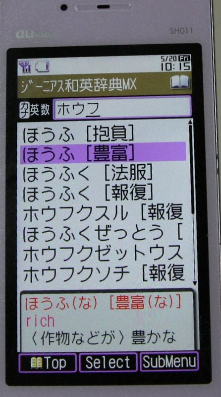 IMG_0268-1