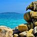 Corse du sud, Porto-Vecchio, Punta di Benedettu, une crique 21 avec la Punta di a Chiappa en face