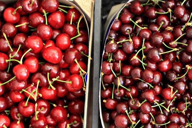 cherry variety