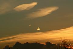 Golden Sunset (Zelda Wynn) Tags: trees sunset newzealand nature beautiful clouds golden twilight auckland ranges waitakere troposphere ©zeldawynn zeldawynnphotography