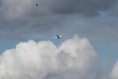 Darwin Regional Airline Saab SF2000 HB-IZH im Himmel über Bern in der Schweiz (chrchr_75) Tags: show juni schweiz switzerland suisse swiss bern flughafen christoph svizzera berne flugplatz internationale berna suissa 1106 2011 flugshow kanton chrigu kantonbern bärn belpmoos chrchr hurni chrchr75 bernbelp chriguhurni woche24 flugmeeting juni2011 belpmoostage belpmoosfest chriguhurnibluemailch albumzzz201106juni