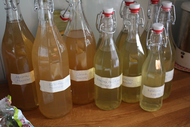 5 Liter Zitronenmelisse