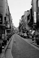 FM2_Planar_Motomachi_20110627_30 (Jun Takeuchi) Tags: street bw film monochrome japan night zeiss cat 50mm blackwhite nikon dusk f14 streetphotography xp2 nightview yokohama filmcamera  motomachi kanagawa  ilford  fm2 50mmf14 planar   carlzeiss   c41 filmphotography   zf newfm2 fm2n  ilfordxp2super400  nikonnewfm2  planart1450 planar1450 planart50mmf14zf   planart1450zf