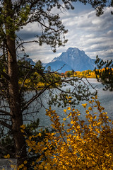 Mount Moran (Wycpl) Tags: mountain grandtetonnationalpark pinetree