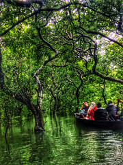 The call of the Forest (xbr786) Tags: fountain sylhet bangladesh stones forest lake ratargul madhabkundo hill water waterfall serene texture